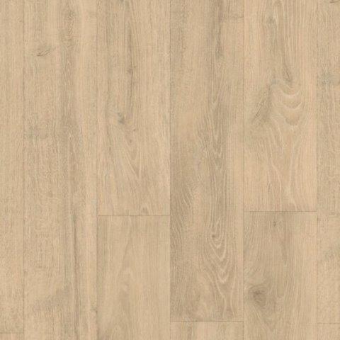 אלון יער בז מגסטיק 3545 (2)