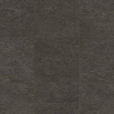 צפחה שחורה אקוסיה 1550